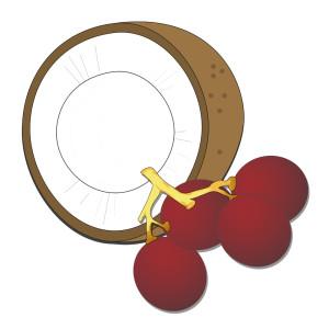 tensioattivi naturali - Coco Glucoside & Gliceryl Oleate - Flower Tales cosmetica naturale fai da te