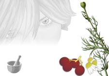 crema struccante fai da te - Flower Tales