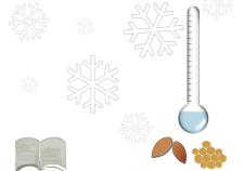 rimedi invernali per la pelle