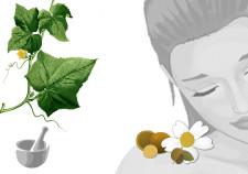 crema viso leggera estratto di cetriolo - Flower Tales: cosmetica naturale fai da te