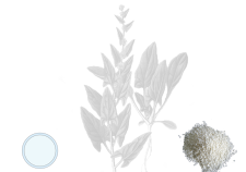 Urea - Flower Tales: cosmetica naturale fai da te