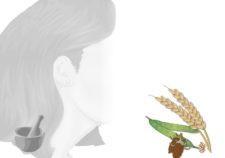balsamo capelli ginseng e mango (ricetta)