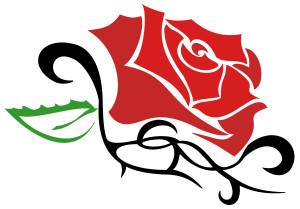 cura del tatuaggio con i prodotti naturali flower tales