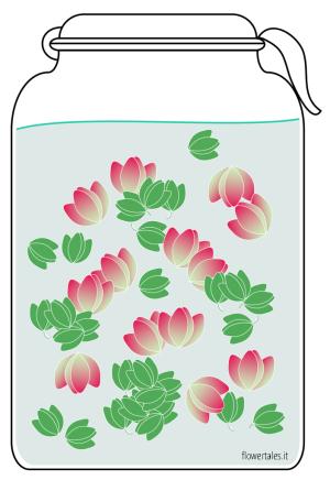 guida ricetta estratto glicerico - estratti glicerici Flower Tales cosmetica naturale fai da te
