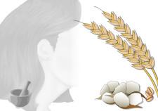 maschera capelli doposole per capelli secchi o dopo il mare sole sale e cloro - Flower Tales cosmetica naturale fai da te