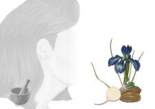 maschera pre-shampoo capelli sfibrati fai-da-te (ricetta naturale)