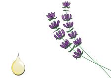 Olio essenziale di lavanda puro cosmetico - Flower Tales cosmetica naturale fai da te