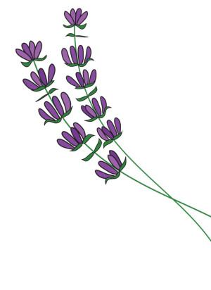 Olio essenziale di lavanda - Flower Tales cosmetica naturale fai da te