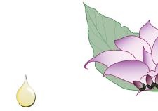 Olio essenziale di salvia sclarea - Flower Tales cosmetica naturale fai da te
