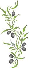 olio di oliva - polifenoli - Oleuropeina