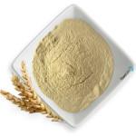 maschera capelli doposole - proteine del grano idrolizzate pure ICEA Flower Tales cosmetici naturali fai da te