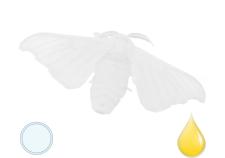 Proteine della seta - Flower Tales cosmetica naturale fai da te