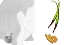 ricetta balsamo mango e mandarino Flower Tales - cosmetica naturale fai da te