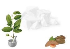 ricetta burro morbido di karité Flower Tales - rimedi naturali e cosmesi fai da te