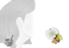 shampoo biodegradabile naturale - Flower Tales: cosmetica naturale fai da te