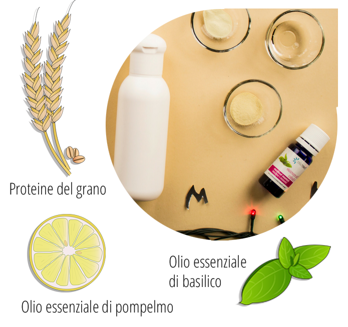 ingredienti shampoo al basilico e pompelmo