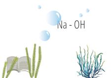 Soluzione di soda caustica - Flower Tales cosmetica naturale fai da te